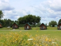Cabins-from-park-800x480.jpg